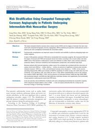 Risk Stratification Using Computed Tomography Coronary ...