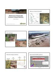 Maintenance of Geomorphic Processes in Stream Diversions