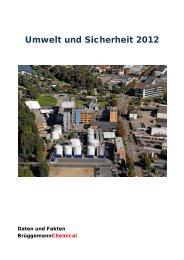Umweltbericht - L. Brüggemann KG