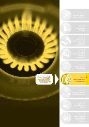 Dormont Gas Hoses Brochure - MGK