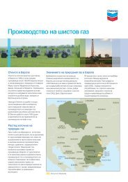 Developing Natural Gas From Shale (Bulgarian) - Chevron