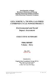 Environmental and Social Impact Assessment - European ...