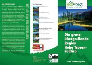 übergreifende Region Hohe Tauern- Südtirol - Alpine Space ...