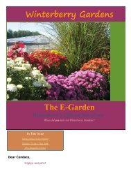 Download This Newsletter - Winterberry Garden Blog