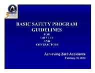 Basic Safety Program Guidelines (145KB) - the St. Louis Council of ...