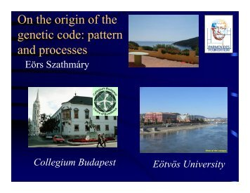 On the origin of the genetic code: pattern and processes