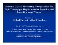 Photonic Crystal Microarray Nanoplatform for High-Throughput ...