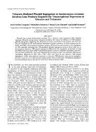 Telomere-Mediated Plasmid Segregation in ... - Genetics