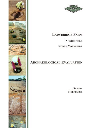 ARCHAEOLOGICAL EVALUATION - Mike Griffiths and Associates
