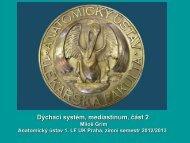 Gr - Anatomický ústav 1.LF UK