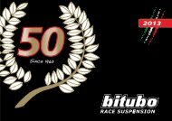 2013 - Bitubo