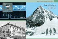 Jahresbericht 2012 - pioniere - der verein