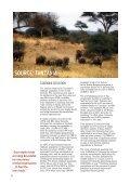 13LDsZZ - Page 6