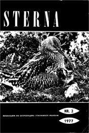 Sterna, bind 16 nr 2 (PDF-fil) - Museum Stavanger
