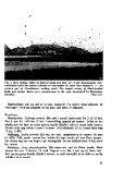 Sterna, bind 16 nr 2 (PDF-fil) - Museum Stavanger - Page 5