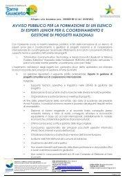 avviso pubblico per la formazione di un elenco di esperti junior per il ...