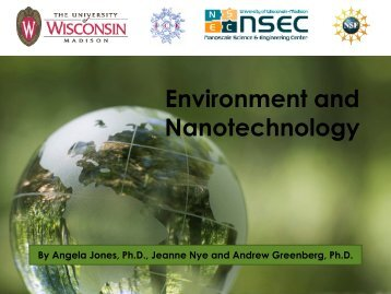 Environment and Nanotechnology - Institute for Chemical Education