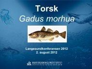 02 Moksness Torsk pdf.pdf - Langesundkonferansen