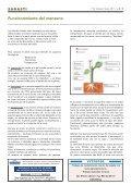 Sagarrondoaren funtzionamendua. Funcionamiento del ... - La Sidra - Page 4