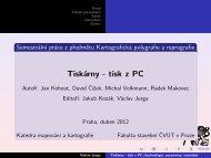 Prezentace práce (pdf)