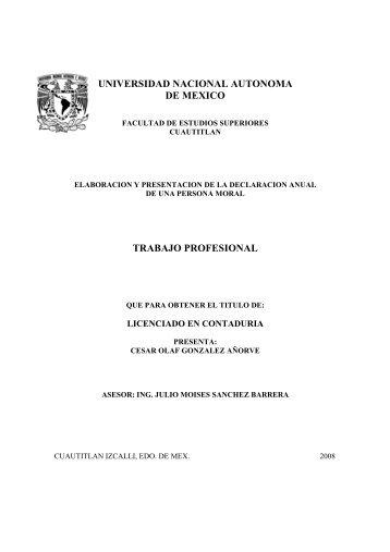universidad nacional autonoma de mexico trabajo profesional