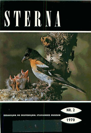 Sterna, bind 9 nr 2 (PDF-fil) - Museum Stavanger