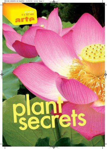 FLYER SECRETS DE PLANTES