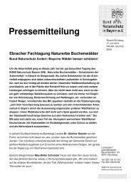 BN fordert: Bayerns Wälder besser schützen! - Nationalpark ...