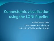 Connectome visualization using the LONI Pipeline