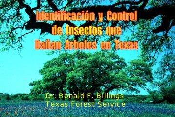 Identificación y control de insectos que dañan árboles ... - ISA Hispana