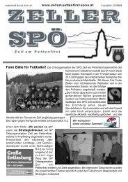 stand die Strategieklausur der SP - SPÖ Zell am Pettenfirst