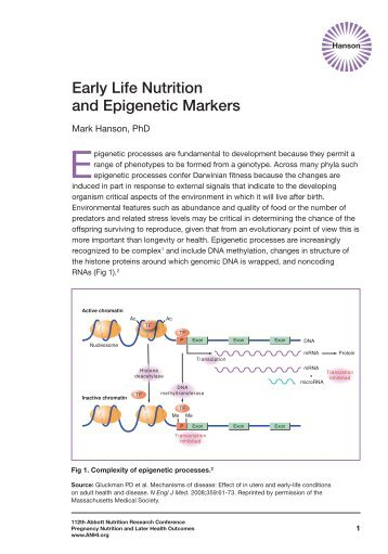 Early Life Nutrition and Epigenetic Markers - Abbott Nutrition