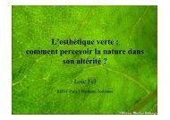 L'esthétique verte : comment percevoir la nature dans son altérité ?