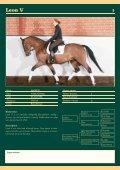 Auktions Katalog - Viegaard - Page 4