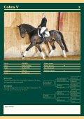 Auktions Katalog - Viegaard - Page 6