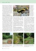 Manche mögens feucht - Waldwissen.net - Seite 2
