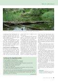 Manche mögens feucht - Waldwissen.net - Seite 3