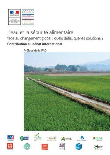 L'eau et la sécurité alimentaire face au changement global