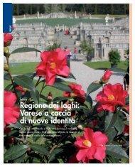 Focus pag 6_13.pdf - Unione degli Industriali della provincia di Varese