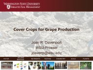 Cover crops for grape production - Tree Fruit Research & Extension ...