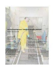 Industriële reiniging 2006-2007 - project verslag - Inspectie SZW
