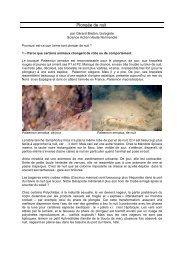 Télécharger le texte illustré - Science Action Haute-Normandie