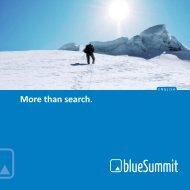 Company Broshure - Blue Summit Media GmbH