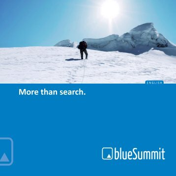 Company Broshure - Blue Summit Media GmbH