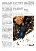 ZAG-Phoenix Jg.1 Heft 2 - FMart - Seite 3