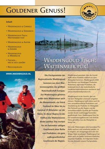 Waddengoud Fisch - Stichting Waddengroep
