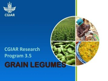 GRAIN LEGUMES - The INCLEN Trust