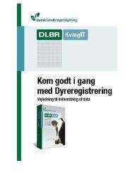 Indberetning af data - DLBR IT