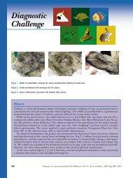 Seminars in Avian and Exotic Pet Medicine: Diagnostic Challenge ...