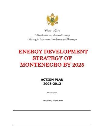 Action Plan 2008